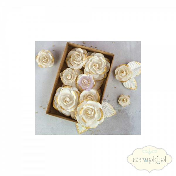 Prima - Boxed Flowers - Gold Kiss
