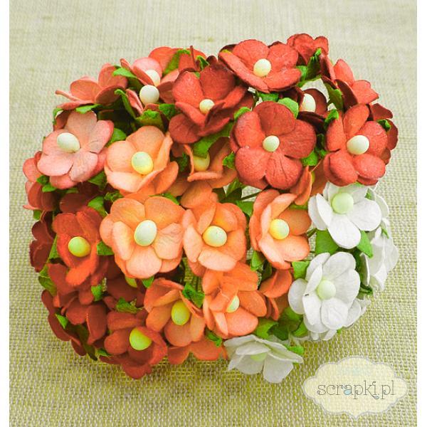 Sweetheart Blossom - kwiatuszki mix biało-pomarańczowy - 5 sztuk